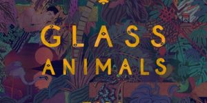 GLASS ANIMALS — ZABA