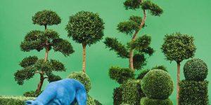 Альбом Bush от Snoop Dogg