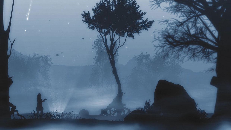 vles 6