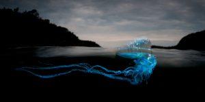 Уникальные «полуподводные» фото Мэтти Смита