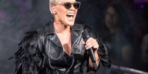 Pink & Eminem— Revenge (сингл)